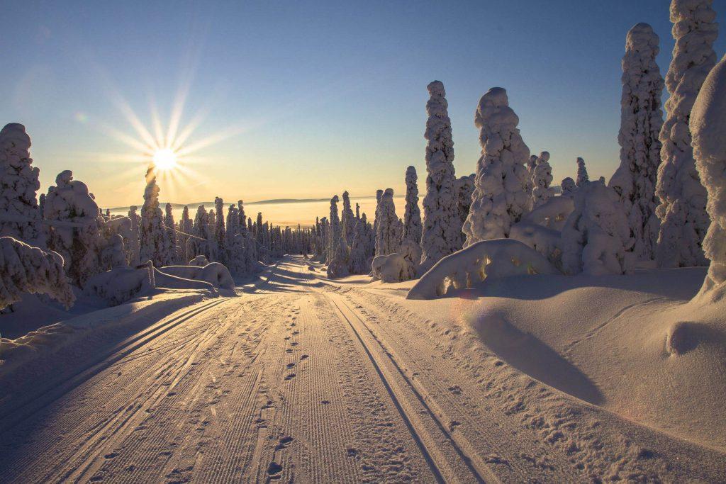 Langlauf-Loipe in Lappland, Finnland.