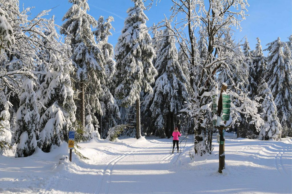 Eine Frau beim Langlaufen im Wald in einer Loipe.