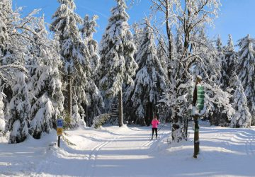 Cross-Country Skiing Routes in the Bavarian Forest. Photo: Mario Liebherr, pixabay.