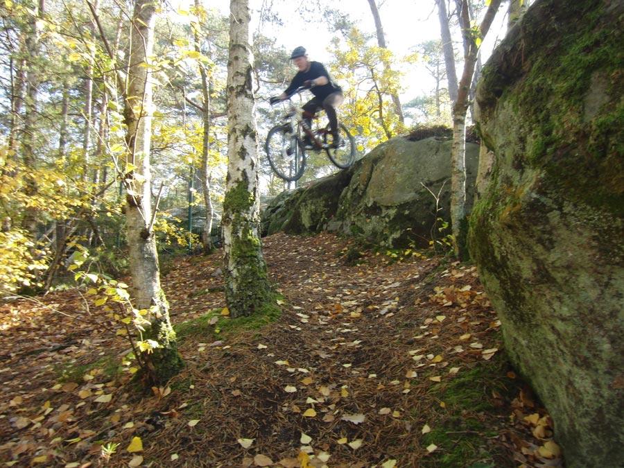 Mountainbiken in Fontainebleau - Kleine und große Steine lassen das Herz höher schlagen.