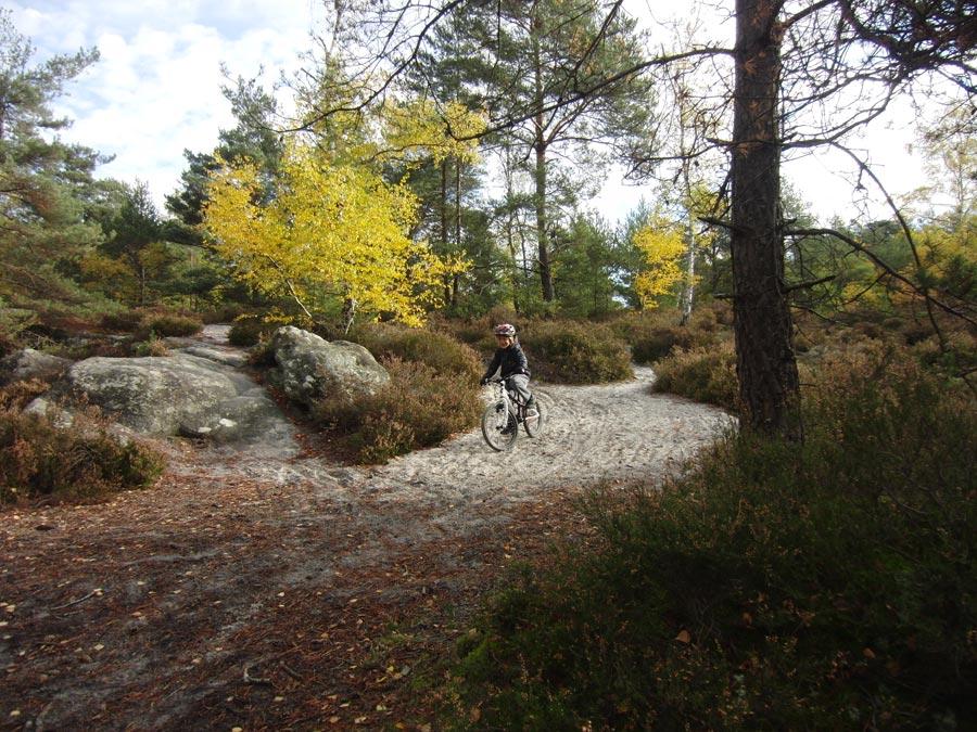 Kind beim Bergabfahren in Fontainebleau.