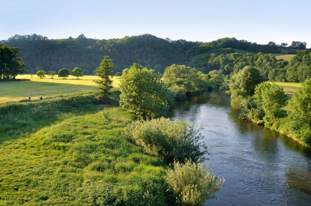 River landscape along the Natursteig Sieg.