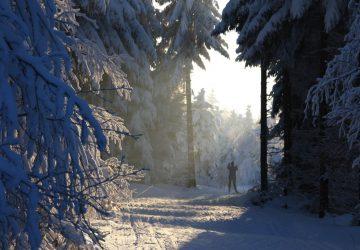 Wintersport im Erzgebirge - Skifahren, Langlaufen, Schneeschuhwandern