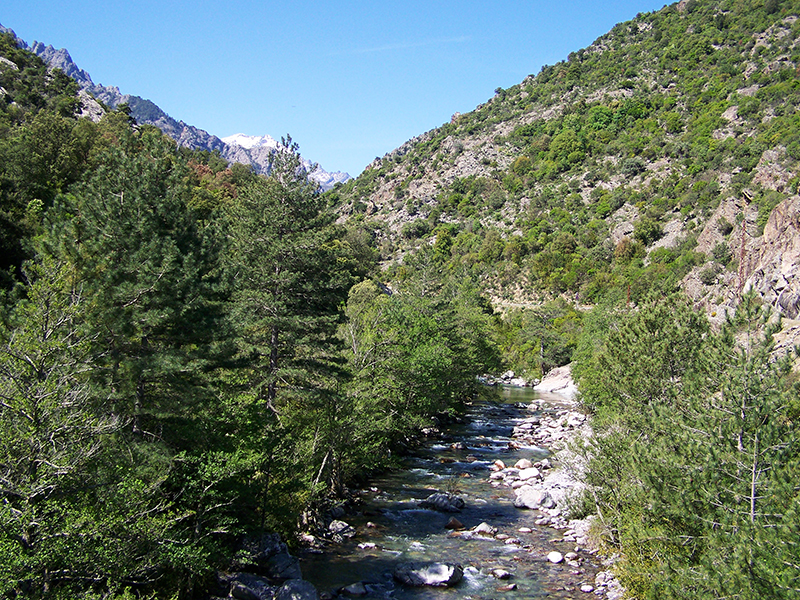 Asco Valley Corsica - The river Asco..