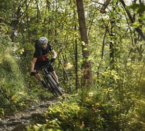 4 Genusstouren fürs Mountainbiken in Bayern