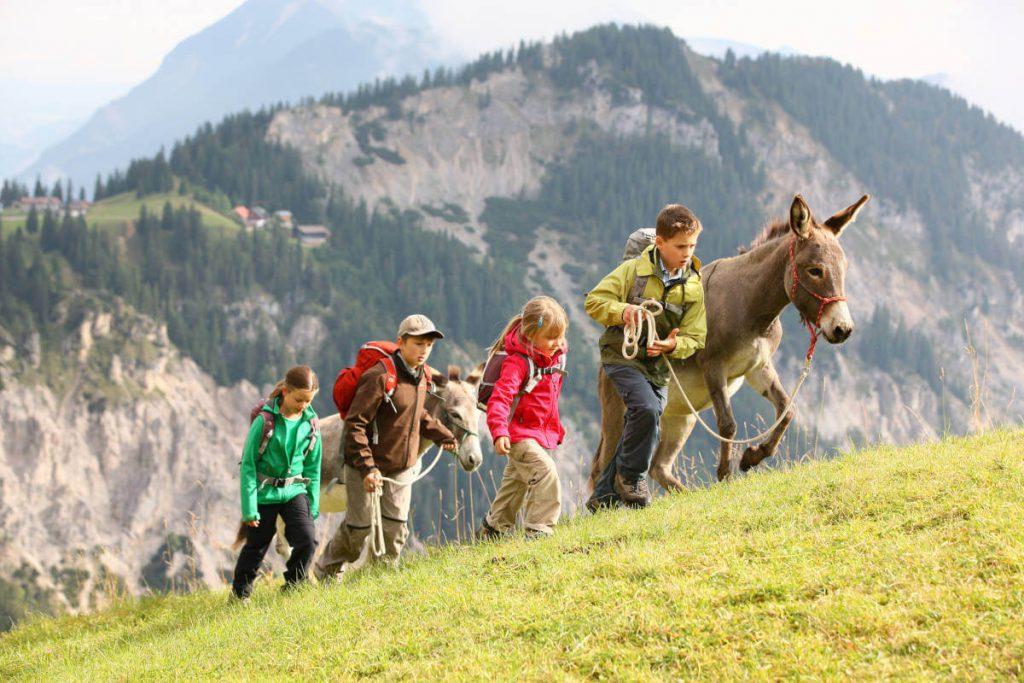 Eselwandern mit Kindern - Ein Gruppe von Kindern beim Wandern mit zwei Eseln.