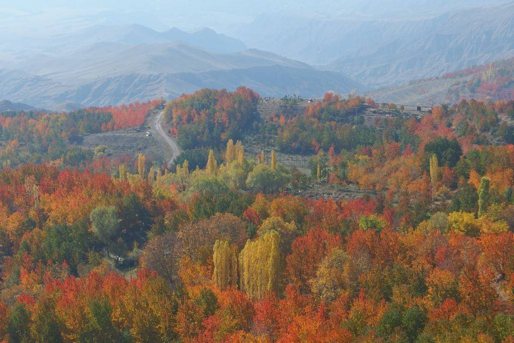 Hiking in the Alamut Valley - deciduous trees in different colours in Iran. ©Malte Ostendorf