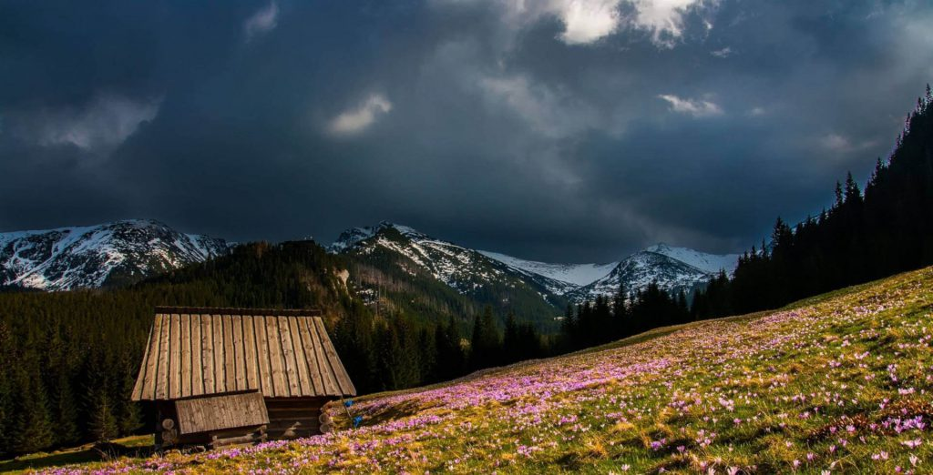 Thunderclouds over a meadow in the mountains.