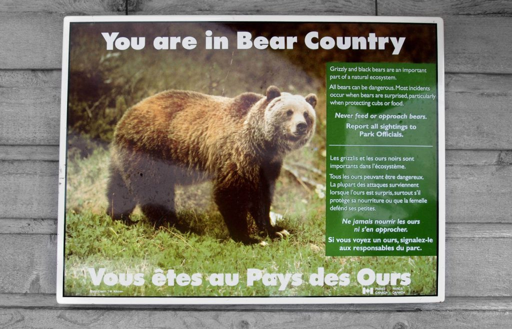 You are in Bear Country - Warning sign in Klondike Gold Rush National Park.