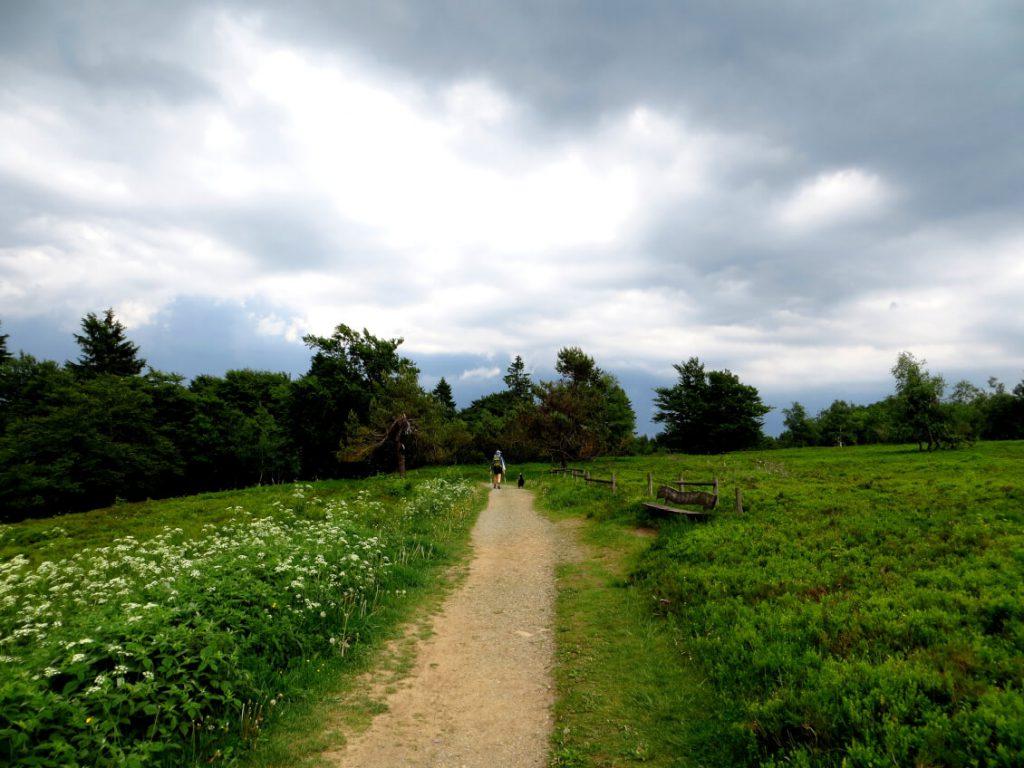 Dunkle Regenwolken sorgen für eine mystische Stimmung am Rothaarsteig.