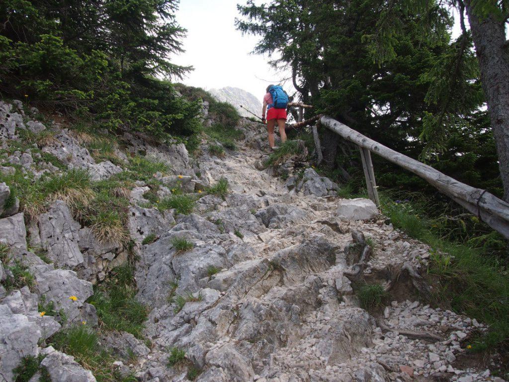 Steinstufen und Holzgeländer auf dem Weg zum Gipfel der Roten Flüh.