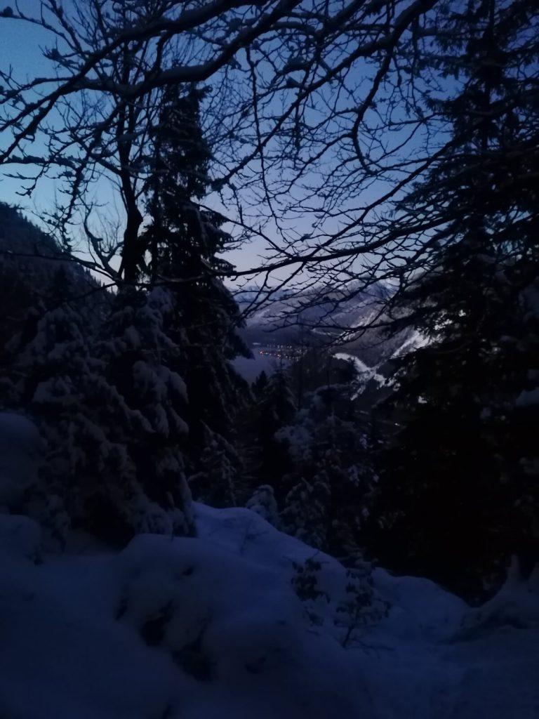 Auf der Wanderung zum Jochberg geht es erst durch bewaldetets Gebiet.