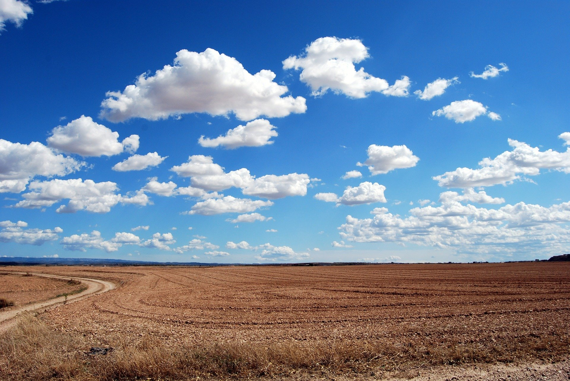 Cumuluswolken sind einzeln und meisten strahlend weiß, wenn sie von der Sonne beschienen werden.
