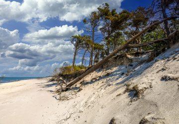 Ostsee-Naturcampingplätze sind malerisch und oft direkt hinter den Dünen gelegen.